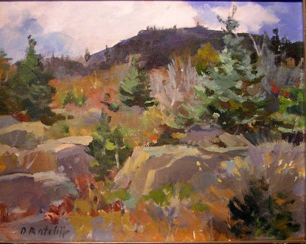 CLOUD SHADOWS ACADIA 16 X 20
